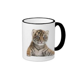 Sumatran Tiger cub Coffee Mugs