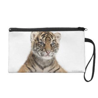 Sumatran Tiger cub Wristlet