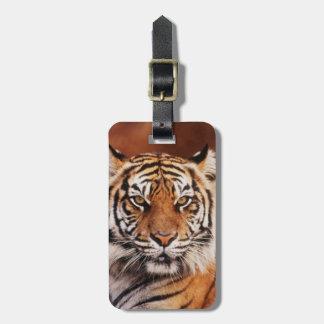 Sumatran Tiger, Panthera tigris Luggage Tag