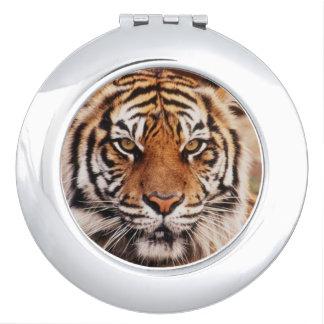 Sumatran Tiger, Panthera tigris Mirror For Makeup
