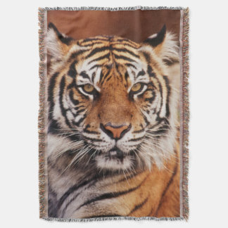 Sumatran Tiger, Panthera tigris Throw Blanket