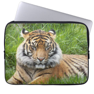 Sumatran Tiger Photo Laptop Laptop Sleeve
