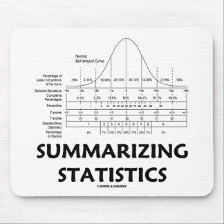 Summarizing Statistics Mousepad