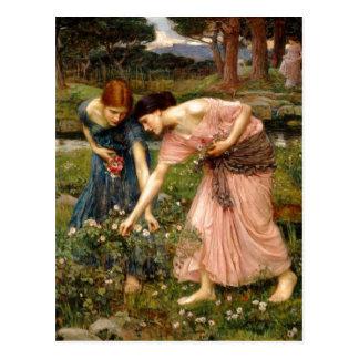 Summary John William Waterhouse 1849-1917 Gather Post Card