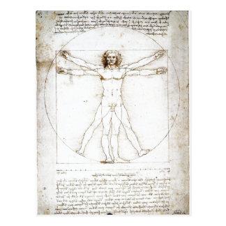 Summary Leonardo da Vinci: The Proportions of the  Postcard