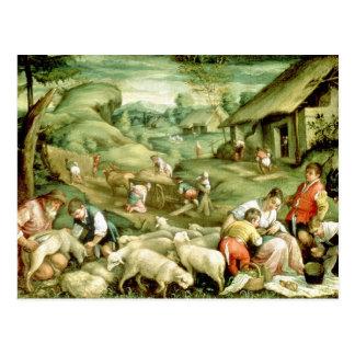 Summer 1570-80 post card