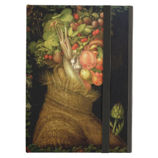Summer, 1573 cover for iPad air