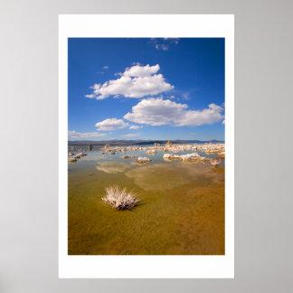 Summer at Mono Lake Poster