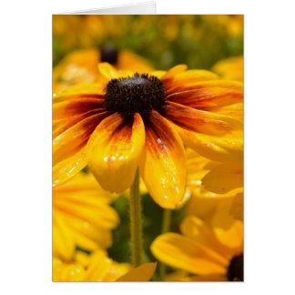 Summer Black Eyed Susan Card