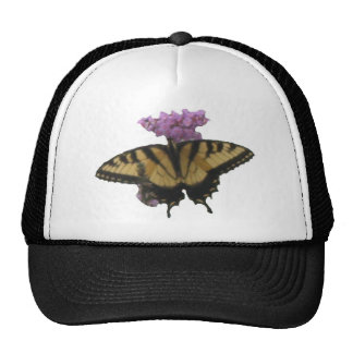 Summer Butterfly Items Cap