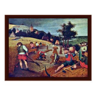 Summer By Grimmer Abel Postcards