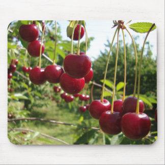 Summer Cherries Mouse Mat