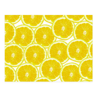 Summer Citrus Lemon Slices Postcard