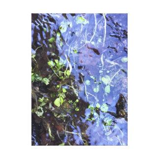 Summer Creek Canvas Print