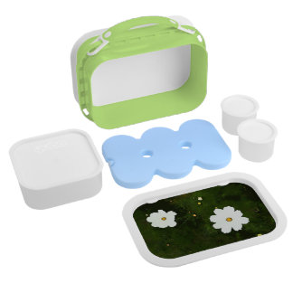 Summer Daisies Lunchbox
