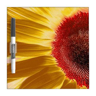 Summer Dry Erase Board