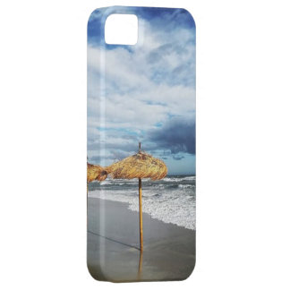 Summer end barely there iPhone 5 case