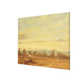 Summer - Evening Landscape (oil on canvas) Canvas Print