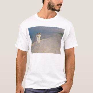 Summer Evening on the Skagen Southern Beach T-Shirt