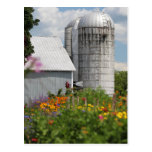 Summer Farm Postcard