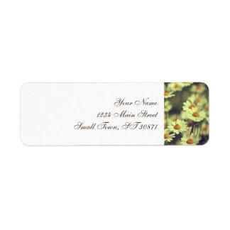 Summer field with white daisy return address label