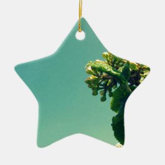 Summer Flower Ceramic Star Decoration
