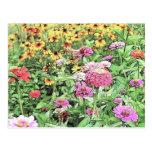 Summer Flower Garden Postcards