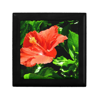 Summer Flower Small Square Gift Box