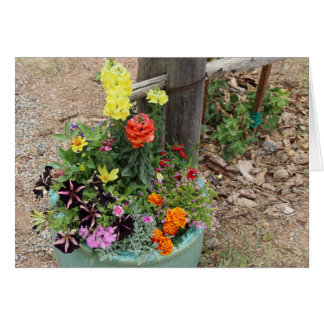 Summer Flowers in Turquoise Pot Photograph Greeting Card