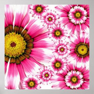 summer flowers pink white gerbera poster