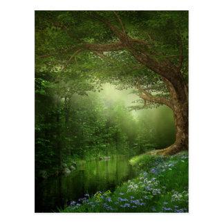 Summer Forest River Postcard