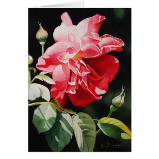 Summer Frolicking in the Garden Greeting Card