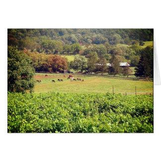 Summer grazing blank card