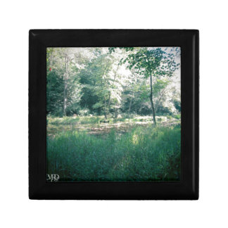 Summer hike small square gift box