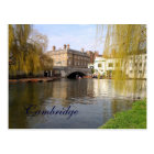 Summer in Cambridge Postcard