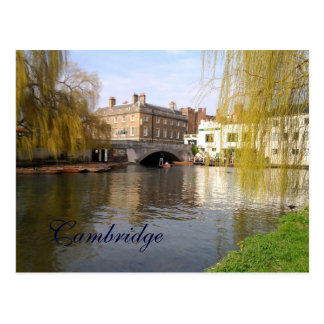 Summer in Cambridge Postcard