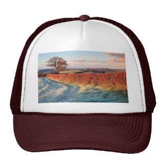 Summer in countryside cap