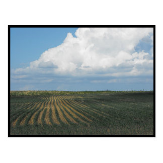 ~ Summer in Lancaster County ~ 34 Postcard