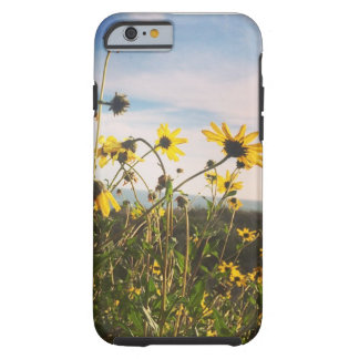 Summer in Southern Cali Tough iPhone 6 Case