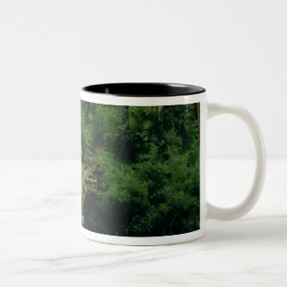 Summer Landscape, 1879 Two-Tone Coffee Mug