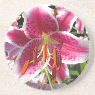 Summer Lily Drink Coaster