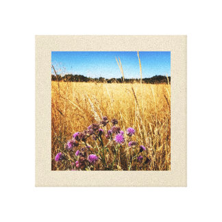 Summer Meadow with Milk Thistle Canvas Print