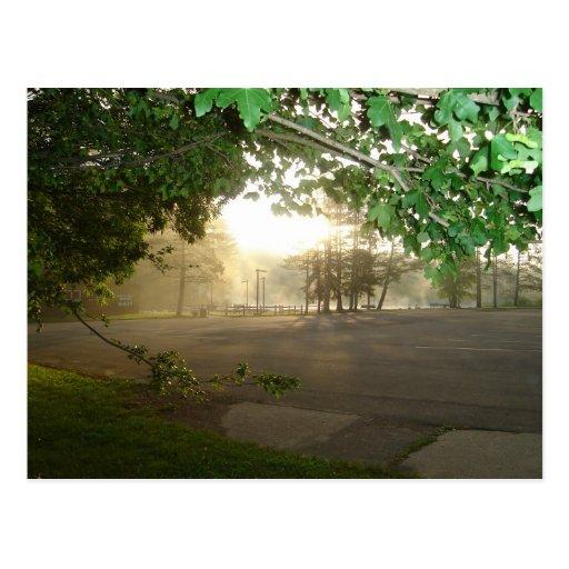 Summer Morning Sunrise Postcards