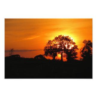 Summer Nights Sky Photo Print