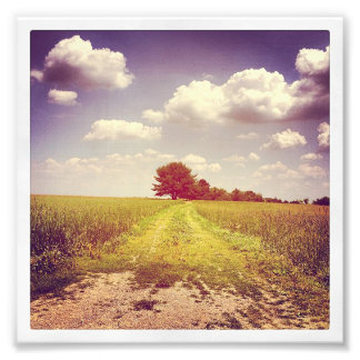Summer Off Road Photo Print