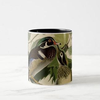 Summer or Wood Duck Mug