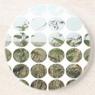 Summer Polka Dots Fields Skies Coasters