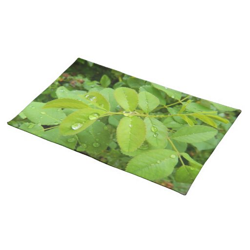 Summer Rain on Plants Placemat