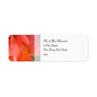 Summer Rose Wedding Return Address Label