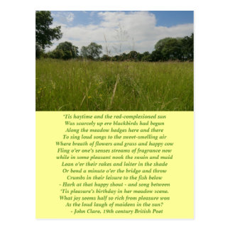 Summer Solstice Haymaking Postcard
